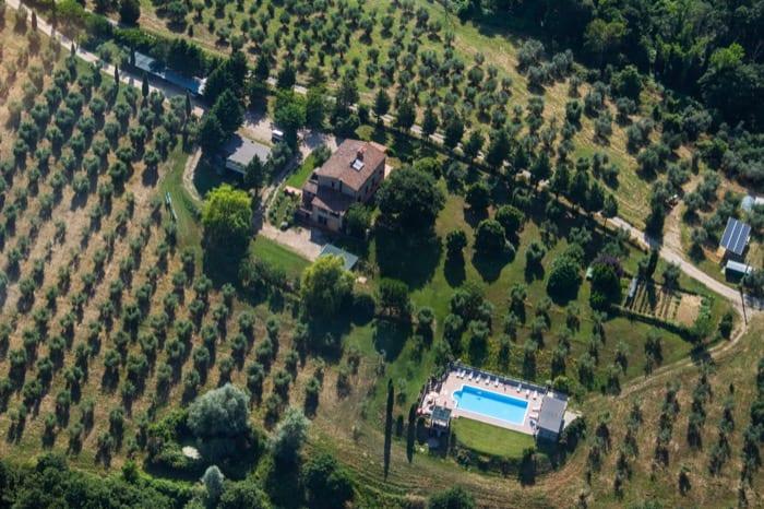 Gårdsturisme og oliventrær hos Cornieto i Orvieto, Umbria