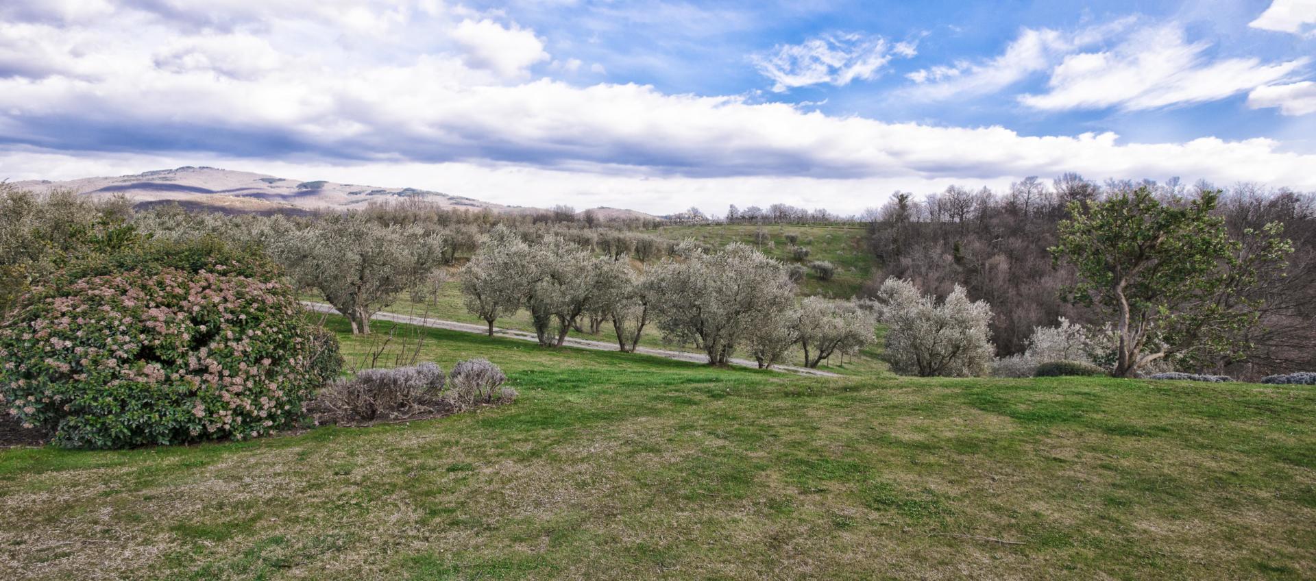 Utsikt fra eiendommen - Foto: Paolo Menchetti
