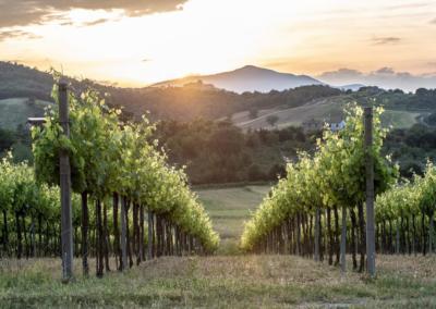 Landskap fra Ficulle i Terni, Umbria